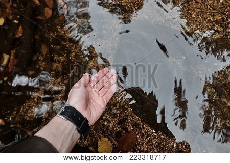 Beautiful female hand on a wild mountain lake in the autumn with yellow and red leaves and rocks under the water