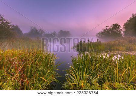 Foggy Marshland On An Early Morning In September Near Haren, Groningen, Netherlands