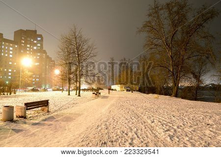 Park at winter night on the outskirts of St. Petersburg, Russia.