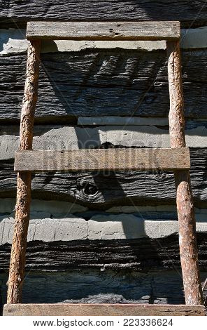 An old homemade ladder leans against the wall of a log cabin with chinking.