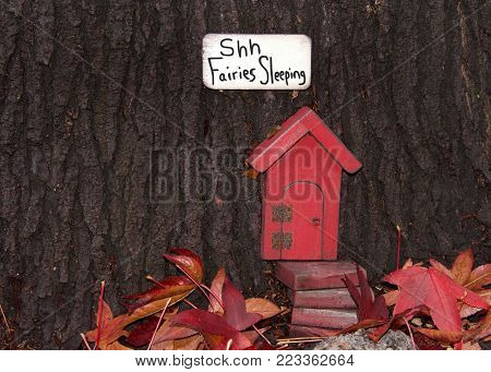 Close up of tree trunk with fairy door, autumn leaves. An urban art movement of tiny fairy doors hitting the curbs, trees, and public spaces on the Island of Alameda, CA spreading a little whimsy