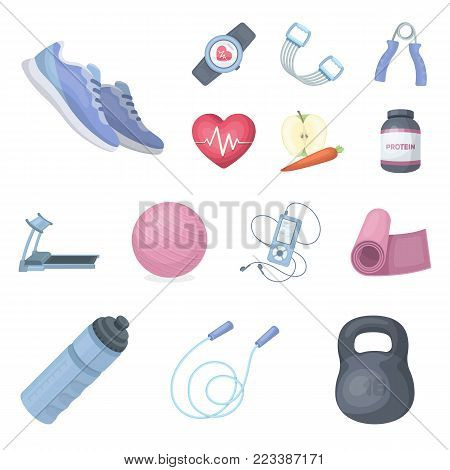 Gym and training cartoon icons in set collection for design. Gym and equipment vector symbol stock illustration.