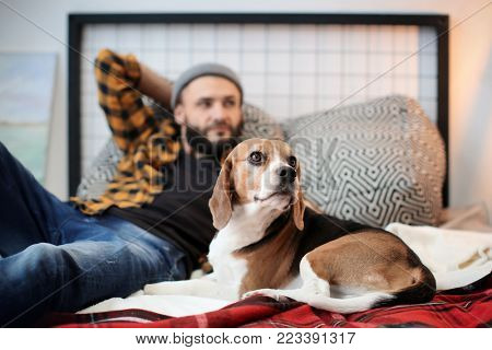 Handsome young hipster with his dog resting on bed at home