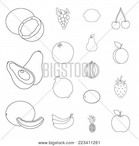 Different fruits outline icons in set collection for design. Fruits and vitamins vector symbol stock  illustration.