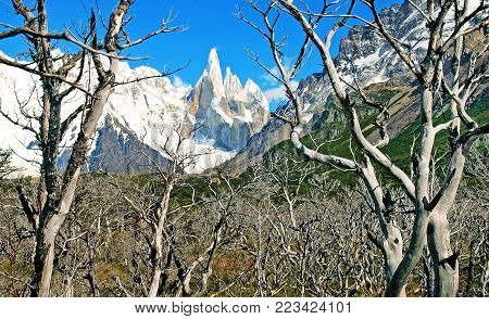 Beautiful landscape with Cerro Torre in Patagonia, South America