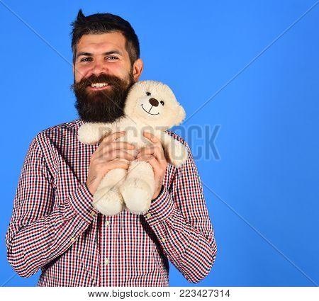 Man Holds Teddy Bear On Blue Background. Man With Beard
