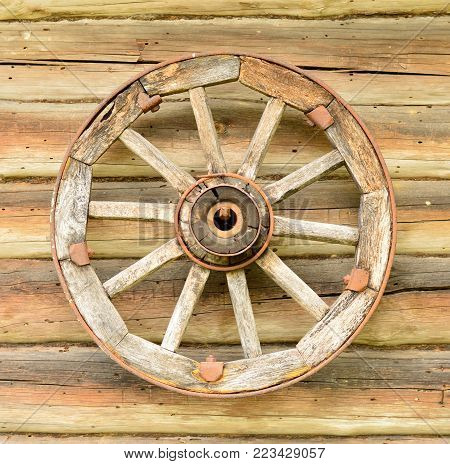 An old wheel hanging on a wooden wall