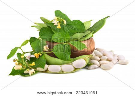 Fresh edamame soy beans with flowers and leaves in bamboo bowl on white background
