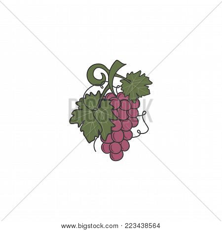 Red Grape icon. Cute flat colors design. Friut symbol for logo, label or badge. Stock vector illustration isolated on white background.