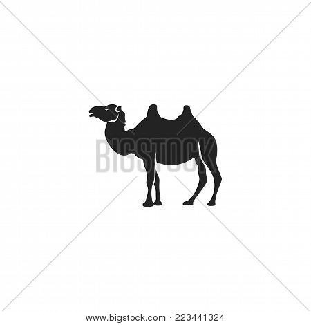 Camel icon silhouette design. Wild animal symbol and element isolated on white background. Vintage hand hand animal pictogram. Stock vector illustration.