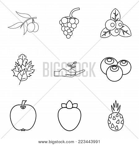 Produce eat icons set. Outline set of 9 produce eat vector icons for web isolated on white background
