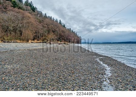 A view of trees and the shoreline at Seahurst Park in Burien, Washington.