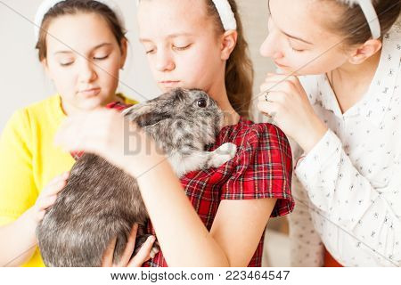 Girls holding a real Lop-eared rabbit and play with it