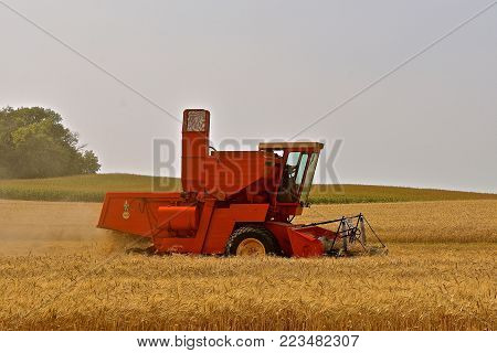 ROLLAG, MINNESOTA, Sept 2, 2017:A self-propelled old Case combine harvestesting wheat provides a field demonstration at the annual WCSTR farm show in Rollag held each Labor Day weekend where 1000's attend.