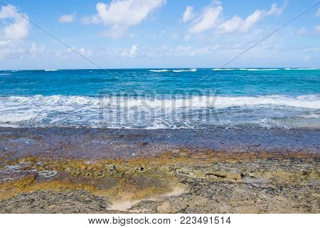 Beach And Pacific Ocean At Turtle Bay Oahu Hawaii.