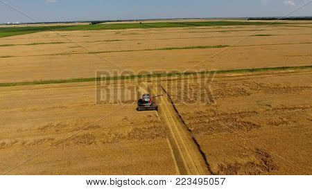 Harvesting barley harvesters. Fields of wheat and barley, the work of agricultural machinery. Combine harvesters and tractors.