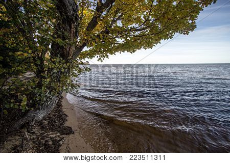 Lake Superior Beach. Tree frames a beautiful sunny beach on the shores of Lake Superior in the Upper Peninsula of Michigan.