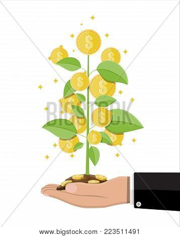 Money coin tree in hand of businessman. Growing money tree. Investment, investing. Gold coins on branches. Symbol of wealth. Business success. Flat style vector illustration.