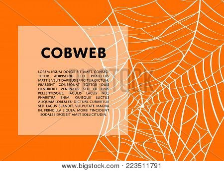 Halloween backdrop with creepy cobweb and space for text. Realistic design element for scary holiday poster decoration. Abstract spider cobweb silhouette on orange background vector illustration.
