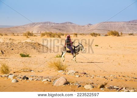 Agadir, Jordan - December 22, 2017: Arab man riding a donkey