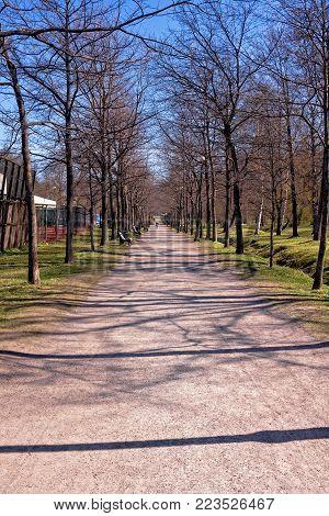 Alley In Tallinn