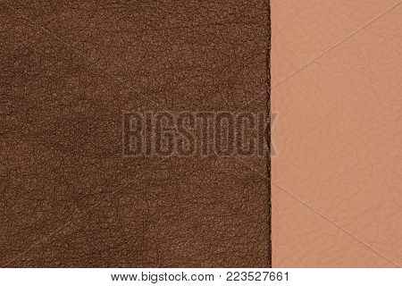 Brown and beige natural leather texture closeup. Top view