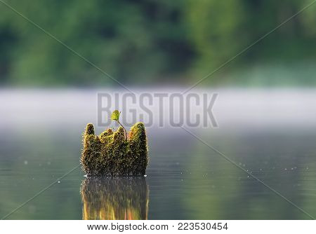 LAKE - Autumn landscape in the morning
