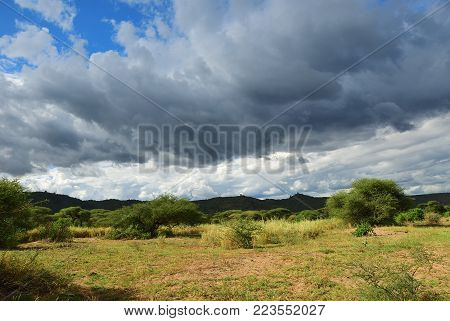 Thunderstorm front over Manyara lake national park, Tanzania, Africa