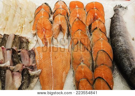 Frozen fish. sale in market. Sea fish on ice. Bunch of raw frozen fish on ice. Red fish