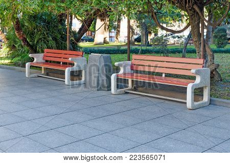 City park or street with green trees and tile - two neat benches made of concrete and wood, between the rubbish bin. Empty copy space for text.