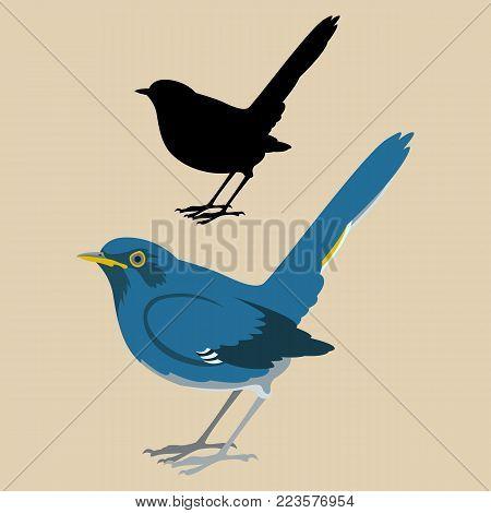 White-bellied Redstar  bird vector illustration flat style black silhouette