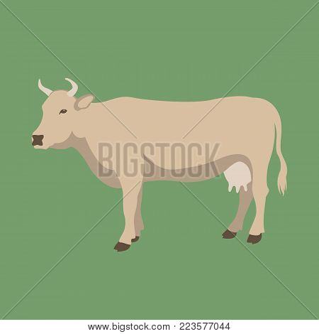 cow vector illustration flat style  profile view