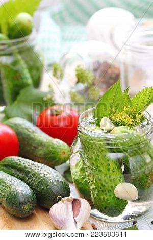 Homemade Pickles In Jar. Preserving Pickled Cucumbers.