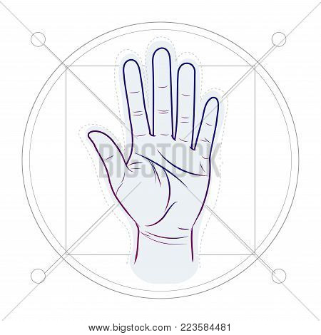 divination by lines on a hand. Palm reading or palmistry. Vector