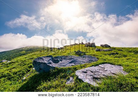 rocky formation on grassy hillside. beautiful scenery of Runa mountain in summertime. location Carpathian mountains, Ukraine