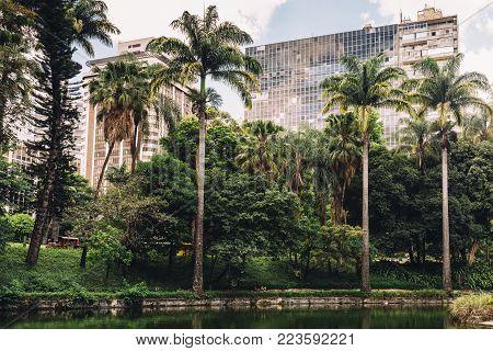 Belo Horizonte Municipal Park in Minas Gerais, Brazil features rare tropical vegetation within its 182, 000 square metres