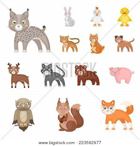 Toy animals cartoon icons in set collection for design. Bird, predator and herbivore vector symbol stock  illustration.