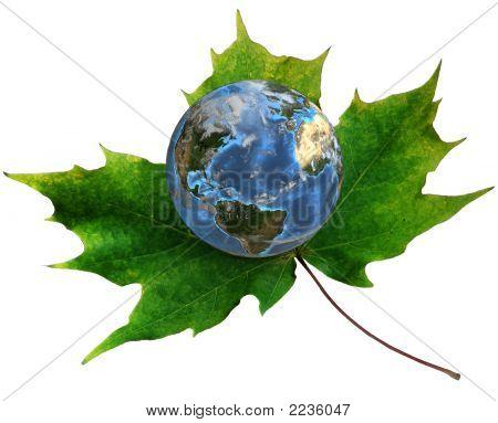 Blue Earth On Green Maple Leaf