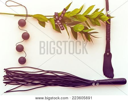 Various sex toys and stems of plants with leaves are on a light background. Natural background for advertising sex shop, postcard, blog