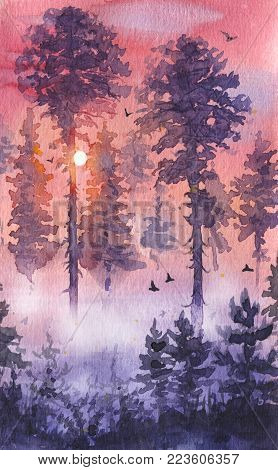 Watercolor painting.  Hand drawn illustration. Evening sunset serenity nature scene with pine and fir trees, mist, sun and flying birds. Colorful vertical coniferous landscape.