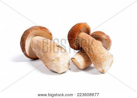 Double Porcini Mushrooms Known As Boletus Edulis Isolated On White Background.