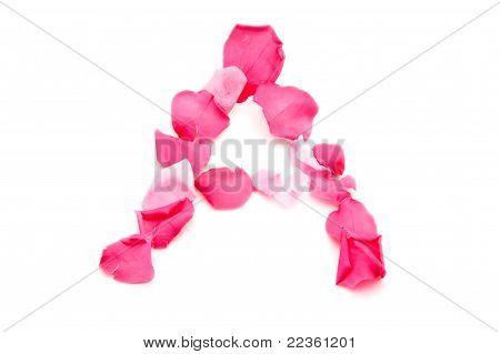 Pink Petal Letter - Capital A