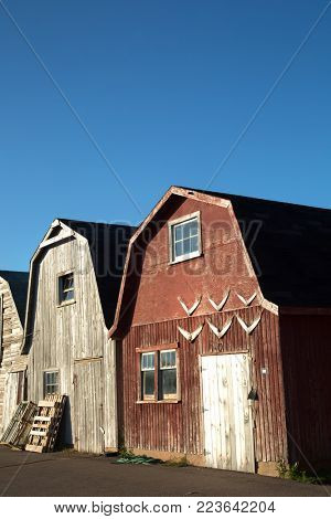 Oysters barns in background  in Malpeque, Prince Edward island also called PEI