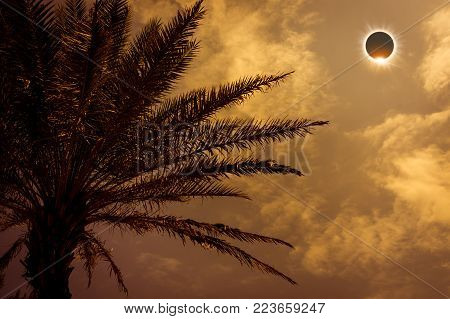Scientific natural phenomenon. Prominence and internal sun's corona. Total solar eclipse with diamond ring effect glowing on sky above silhouette of trees. Sepia tone. Serenity nature background.