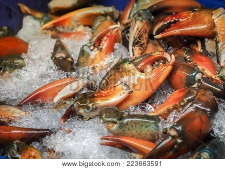 Raw sea crab claws on ice for sale in seafood market. Thailand.