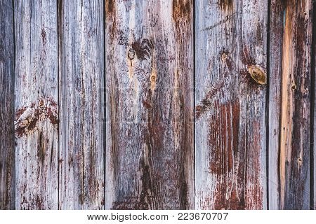 grey boards texture background, a substrate for the site