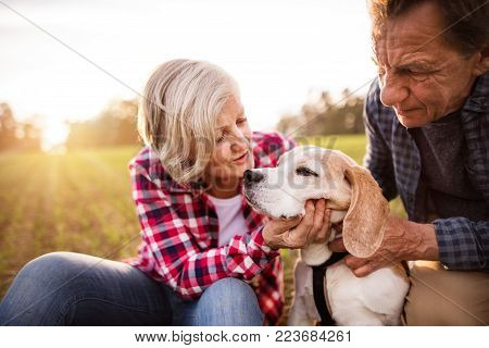 Active senior couple with dog on a walk in a beautiful autumn nature. Close up.
