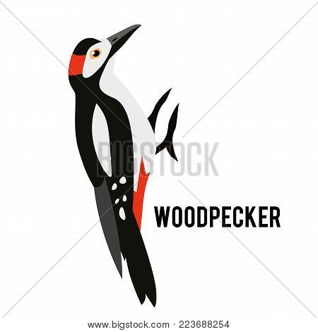Great Spotted Woodpecker Isolated On White Background. Winter Bird In A Flat Style. Forest Animal.