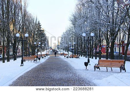 Chernihiv / Ukraine. 24 January 2018: beautiful winter park with trees benches and path. 24 January 2018 Chernihiv / Ukraine.