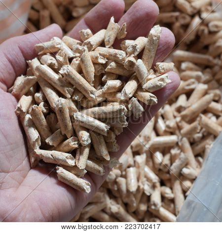 Hand holding ecological wood pellets for heating. Square composition.